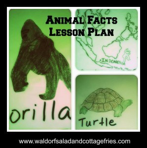 Animal facts lesson plan - Geeky Educational Link Up
