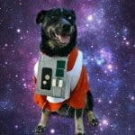 Geeky Educational Link Up: Star Wars Dog Costume