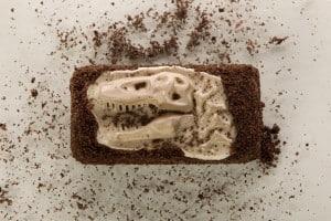 Dinosaur fossil chocolate